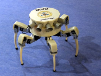 CAIR-DRDO_India_Hexapod